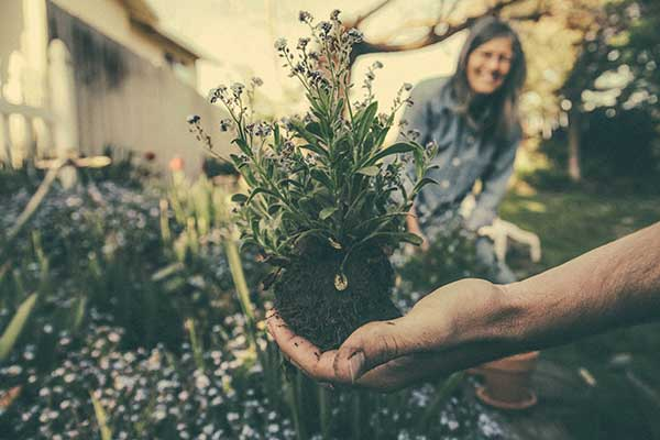 Making new friends - What's Special About Gardening
